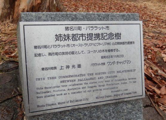 ユーカリの木の銘板